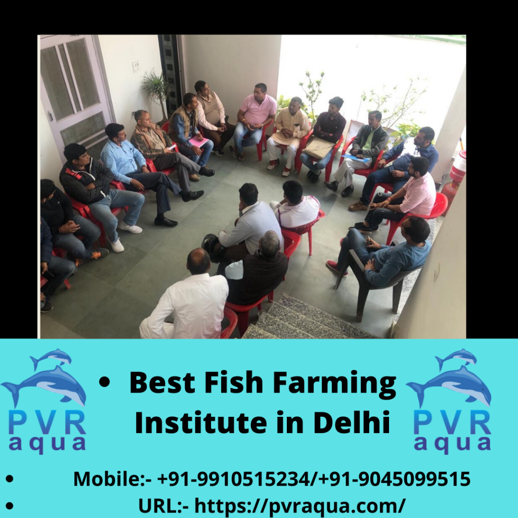 PVR Aqua - Fish Farming Institute